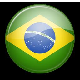 http://football.kulichki.net/world/2010/flag/boll/Brazil.png